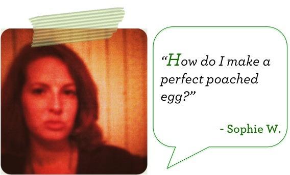 Sophie_Eggs