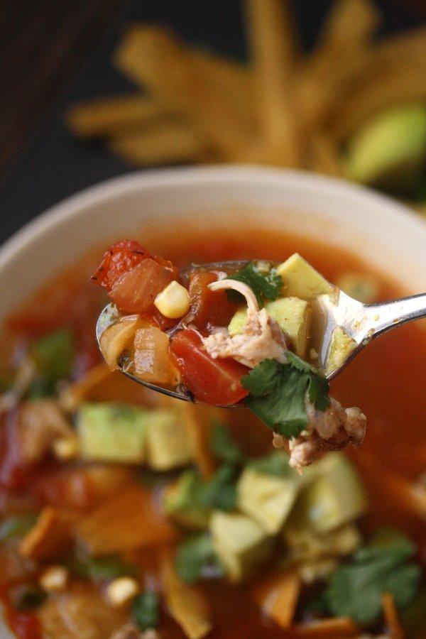 Easy Chicken Tortilla Soup Recipe - spicy and delicious with avocado on top