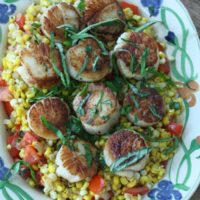 Scallops on a platter on a bed of corn and tomatoes and basil