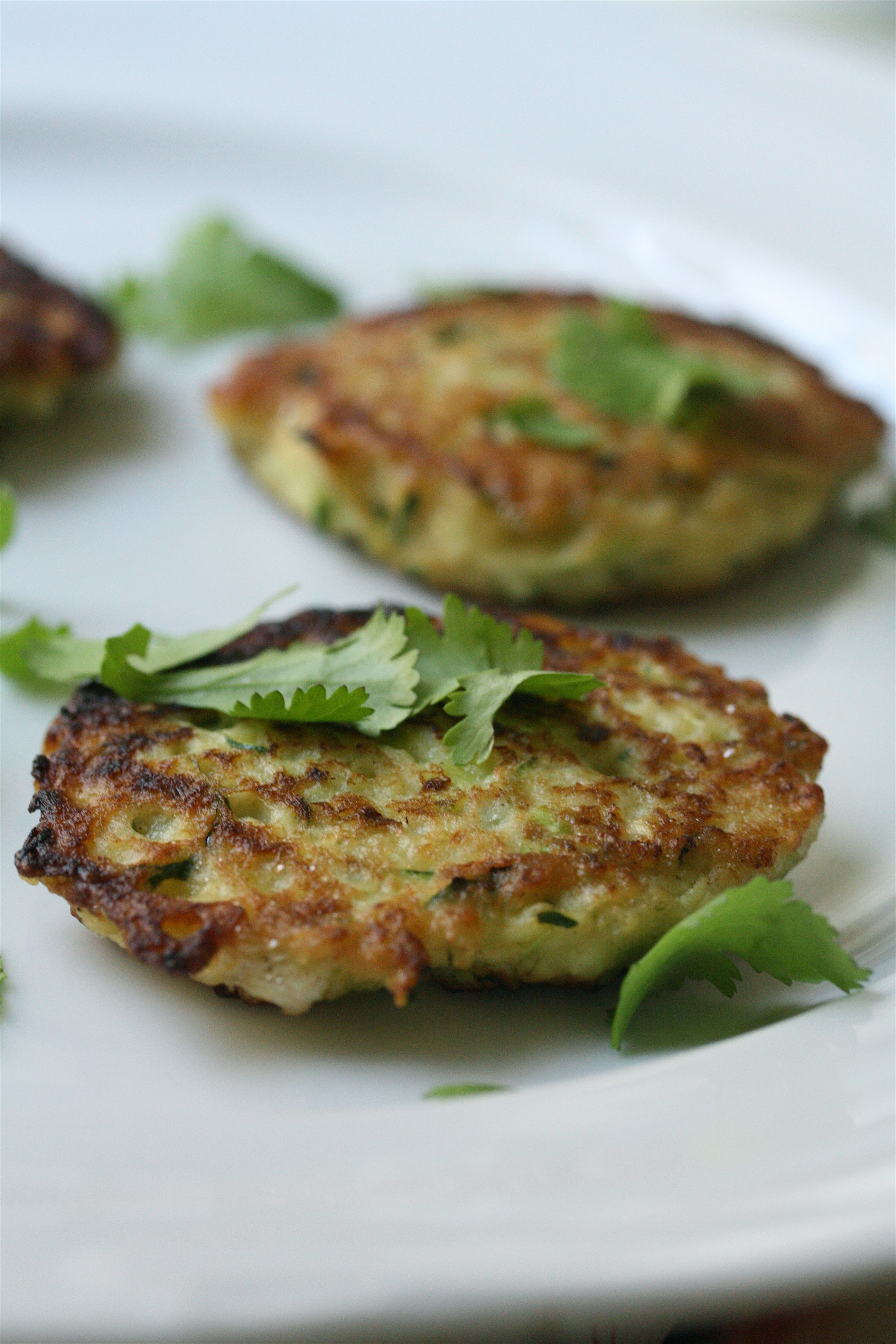 Zucchini Fritters Recipe with Scallions | Vegetarian, Easy Side Dish