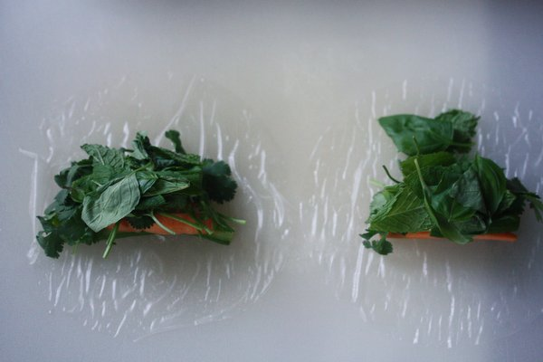 Rice Paper Roll for Summer Roll Recipe