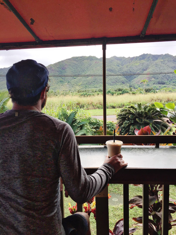 Kauai Hawaii Best Juice Stand