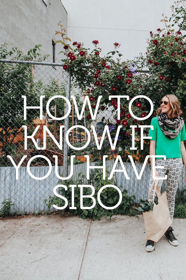 Do I Have SIBO? Symptoms and Gut Garden