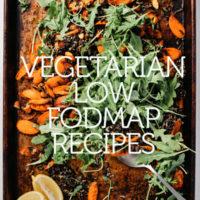 vegetarian low fodmap recipe
